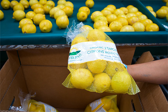 bag-of-lemons